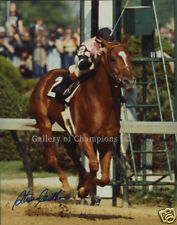 Affirmed 1978 Kentucky Derby Photo #406 8x10 Signed