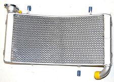 NEU Ducati Monster S4 Wasserkühler Wasser kühler Cooler water radiator new