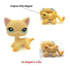 Littlest Pet Shop Animals LPS #339 Orange Short hair Cat cute Kitty
