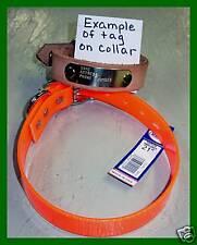 "HUNTING DOG COLLARS  #100D ORANGE DAYGLO 21"" DOG COLLAR FREE BRASS NAMEPLATE"