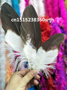 Wholesale 10 pcs coffee high quality natural Golden feathers 6-9 Inch /15-20 cm