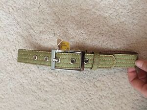 """Large 22"""" Martha Stewart PETS Coated Linen Dog Collar Buckle Green (new no tag)"""