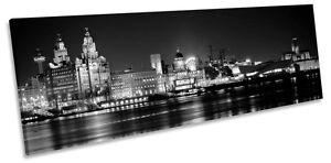 Liverpool City Skyline B&W CANVAS WALL ART Panoramic Framed Print