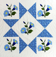 Large Hand Applique Morning Glory Star design QUILT TOP - Queen size masterpiece