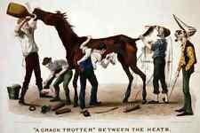 Crack Trotter Horse A4 Photo Print 001