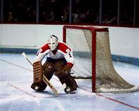 Michel Larocque Montreal Canadiens 8x10 Photo