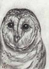 Barn Owl night bird raptor aceo EBSQ original Loberg wildlife Mini Art Charcoal