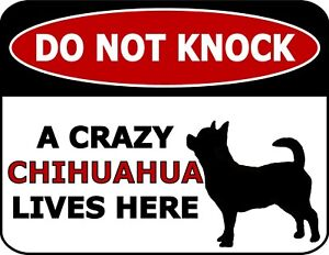 Do Not Knock A Crazy Chihuahua Lives Here Silhouette Laminated Dog Sign