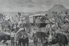 1881 Large Engravings- Peace Announced- President Brand- Boer War - South Africa