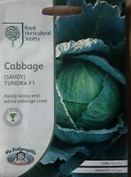 Mr Fothergills - Vegetable - RHS Cabbage (Savoy) Tundra F1 - 50 Seeds