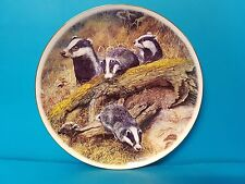 Badger Sow and Cubs Royal Vale Collectors Plate