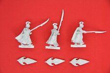 LOTR - Guerrieri Elfi Alti - High Elf Warriors