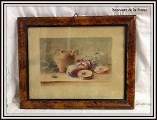 """Peinture / aquarelle ancienne nature morte  """"LES ABRICOTS """" DE """" A. MAVEL """""""