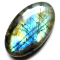 Cts. 42.45 Natural Full Multi Fire Labradorite Cabochon Oval Cab Loose Gemstones