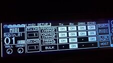 Yamaha 01/V Custom (Negative) LED Graphic Display !