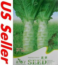 Green Asparagus Lettuce Seeds E110, 30 Seeds Vegetable Garden Biennial