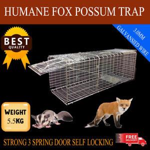 XXL GENUINE KASA HUMANE FOX POSSUM TRAP 3 SPRING LOADED FOLD DESIGN