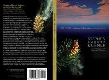 PINE POLLEN - ancient medicine for a new millenium STEPHEN HARROD BUHNER book