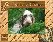 Spinone Italiano Laser Engraved Wood Picture Frame (5 x 7)