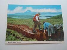 Cutting Peat In Scotland (21049)  - Vintage  Postcard §B2746