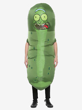 Rick And Morty Pickle Rick Inflatable Costume