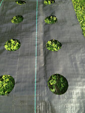 Garden mat Weed Barrier with planting hole 4'x6' SOIL EROSION CONTROL