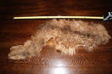 Rare BABY ALPACA Fur Pelt Hide Skin Taxidermy Tanned Furs Pelts Hides #A114