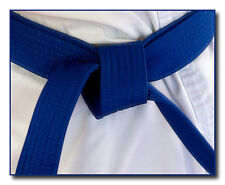 Shaolin American Kempo Karate Blue Belt Course [4th Rank] - Gm Jim Brassard