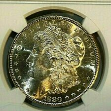 1880-S $1Morgan Silver Dollar  NGC MS 64  ~~Nice Golden Hue ~~ (001)