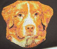 New ListingEmbroidered Ladies Short-Sleeved T-Shirt - Nova Scotia Duck Tolling Retriever Dl