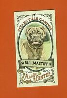 2019 Topps Allen & Ginter Collectibles Canines Mini Bullmastiff CC-20