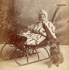 Beautiful Child Budled Up on Sled Trusty Dog & Snow by Eclipse Jamestown NY