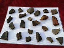 Fragmentos de cerámica romana Greyware Samian Ware (patrones) #17