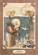MARCO PANNELLA - Predica agli uccelli, San Francesco ( Tullio Pericoli )