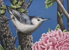 bird aceo art print nuthatch flower limited edition signed miniature KR