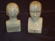 PHRENOLOGY HEAD  L.N FOWLER STYLE /PALMISTRY /SKULL Film Shop Prop  Dr Small