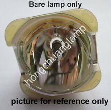 Projector Replacement Lamp Bulb For DIGITAL PROJECTION DVISION 105-824 109-387