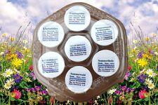 Honig Set 7 verschiedene Sorten Bienen Honig feincrem von Chemnitztalimkerei