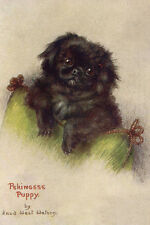 Pekingese Puppy Dog by Maude West Watson 1920's - LARGE New Blank Note Cards