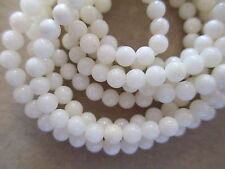 "200+ All Natural White Coral Beads - 4mm Round - 36"" Strand Genuine Coral Beads"