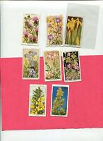 1936 W.D. & H.O. WILL'S CIGARETTES WILD FLOWERS 8 DIFFERENT TOBACCO CARD LOT