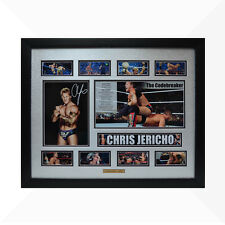 Chris Jericho WWE Signed & Framed Memorabilia - Silver/Black  Limited Edition