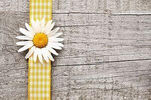 4x Tischsets / Platzmatten / Platzset abwaschbar / Motiv 'yellow flowerband'