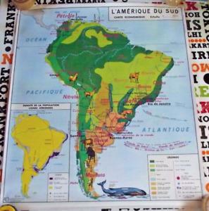 l'Amérique du Sud Carte de Géographie faune et flore affiche d'école poster