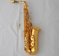 25% SALE!!! Professional 54 Reference Alto Saxophone Gold Sax High F# With Case