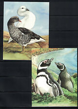 British CW: Falkland Islands: 2 Picture Post Cards - Island Birds NH - Lot#8/8