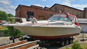 SeaRay 280 Sundancer, SPEZIAL: Doppel-Außenbord-Motorisierung