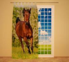 """Foto Schlaufenschal Vorhang Gardine """"Pferd auf Wiese"""""""