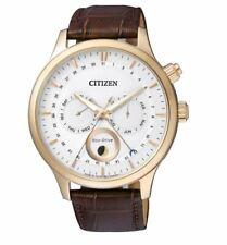 Citizen Eco-drive Para Hombre global Collection AP1052-00A Oro Rosa Estuche Reloj de 42mm