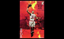 Rare Alonzo Mourning THE HOT ZONE Miami Heat 2006 NBA Action Costacos POSTER
